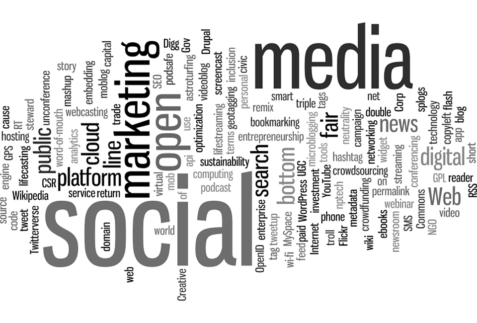 Sei rana o lombrico? Il piano editoriale per blog e social pages aziendali.